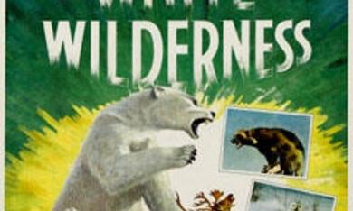 Weiße Wildnis - Bild 1
