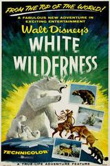 Weiße Wildnis - Poster