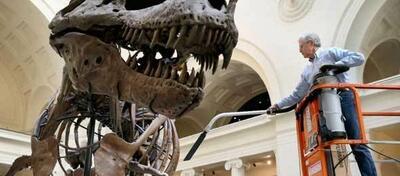 Szene aus Dinosaur 13