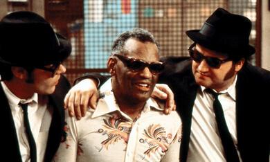 Blues Brothers mit Dan Aykroyd, John Belushi und Ray Charles - Bild 12