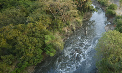 Serengeti - Bild 2