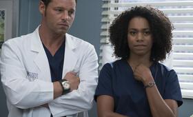 Grey's Anatomy - Die jungen Ärzte Staffel 14, Grey's Anatomy - Die jungen Ärzte - Staffel 14 Episode 4 mit Justin Chambers und Kelly McCreary - Bild 44