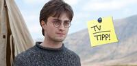 Bild zu:  Daniel Radcliffe in Harry Potter und die Heiligtümer des Todes 1