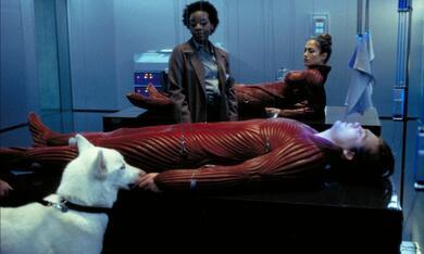 The Cell mit Vincent D'Onofrio, Jennifer Lopez und Marianne Jean-Baptiste - Bild 8