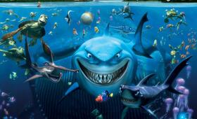 Findet Nemo - Bild 7