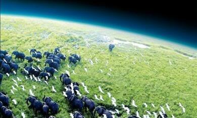 Planet Erde - Bild 2