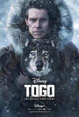 Togo: Der Schlittenhund - Poster