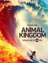 Animal Kingdom - Staffel 4 - Poster