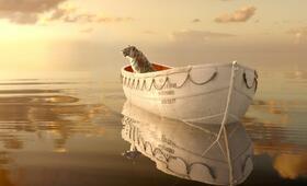 Life of Pi: Schiffbruch mit Tiger - Bild 10