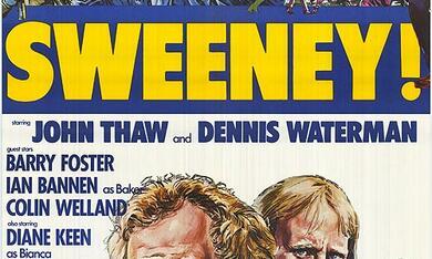 Deckname Sweeney - Bild 1