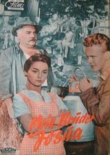 Der Bauer vom Brucknerhof - Poster