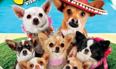Beverly Hills Chihuahua 3 - Bild 12