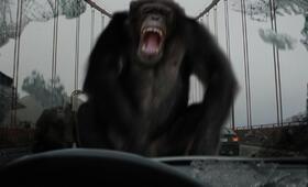 Planet der Affen: Prevolution - Bild 12