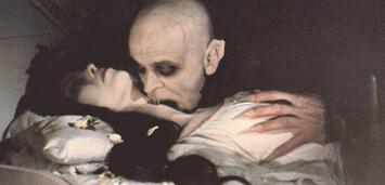 Bild zu:  Nosferatu
