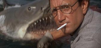 Roy Scheider in Der weiße Hai