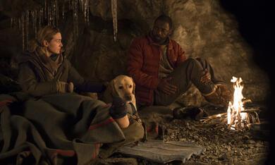 Zwischen zwei Leben - The Mountain Between Us mit Kate Winslet und Idris Elba - Bild 6