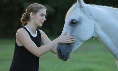 Urban Country mit Brighton Sharbino - Bild 6