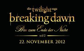 Breaking Dawn - Bis(s) zum Ende der Nacht - Teil 2 - Bild 39