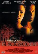 Blackwoods - Hetzjagd in die Vergangenheit - Poster