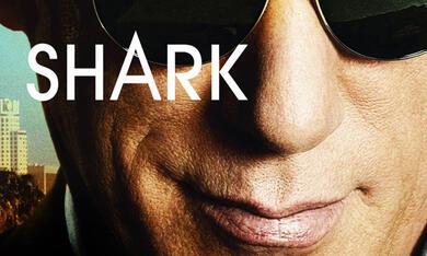 Shark - Bild 1