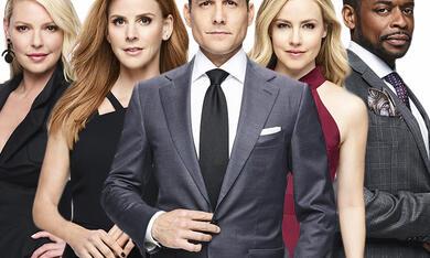 Suits 8 Staffel