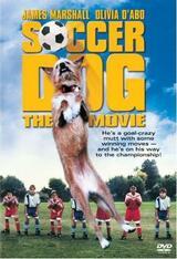 Lincoln - Ein Hund von einem Stürmer - Poster