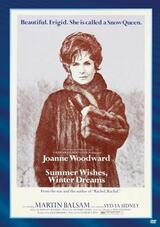 Sommerwünsche - Winterträume - Poster