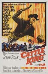 Revolverhelden von Wyoming - Poster