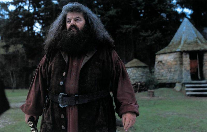 Harry Potter und der S...