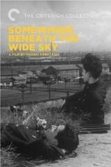 Somewhere Beneath the Wide Sky - Poster