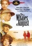 Wale im August