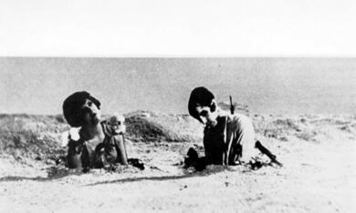 Ein andalusischer Hund - Bild 7