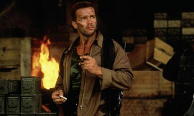 Predator mit Arnold Schwarzenegger - Bild 9