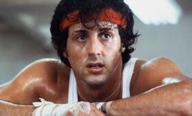 Sylvester Stallone - Bild 335