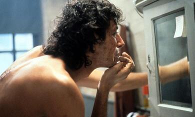 Die Fliege mit Jeff Goldblum - Bild 1