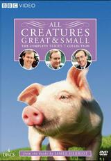 Der Doktor und das liebe Vieh - Staffel 7 - Poster