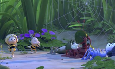 Die Biene Maja 2 - Die Honigspiele - Bild 9