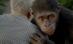 Planet der Affen: Prevolution - Bild 15