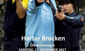 Harter Brocken: Die Kronzeugin, Harter Brocken: Der Bankraub - Bild 17