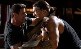 Shootout - Keine Gnade mit Sylvester Stallone und Jason Momoa - Bild 285