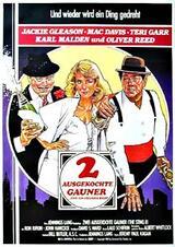 Zwei ausgekochte Gauner - Poster