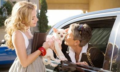 Beverly Hills Chihuahua - Bild 2