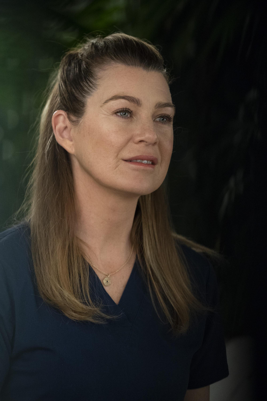 Greys Anatomy Staffel 9 Bs