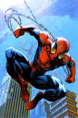 Der ultimative Spider-Man - Poster
