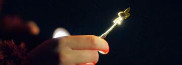 Locke & Key - Pflanzen-Schlüssel