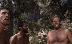 Planet der Affen mit Charlton Heston - Bild 6