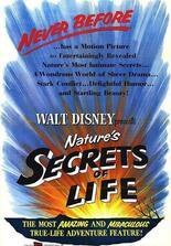 Geheimnisse des Lebens