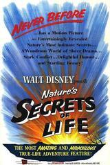 Geheimnisse des Lebens - Poster