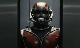 Ant-Man mit Paul Rudd - Bild 70