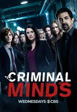 Criminal Minds - Staffel 13 - Poster